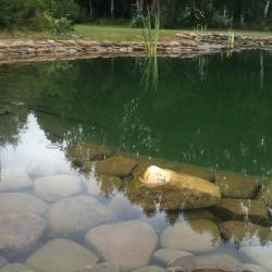 Ландшафт, отделка пруда камнями