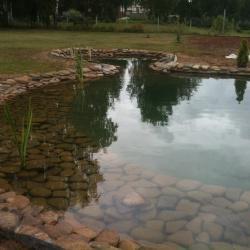 Аккуратный пруд на даче, ландшафт пруда